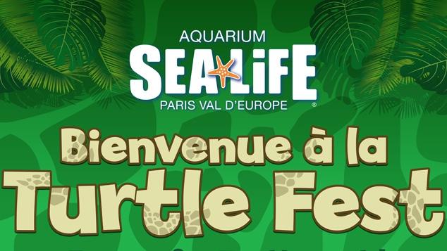 Turtle Fest