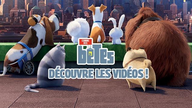 Comme des bêtes : les bonus vidéo du film !
