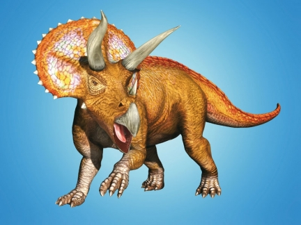 Tricératops dans Dinosaur King