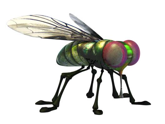 La mouche personnages images l on t erreur de la - Dessin de mouche ...