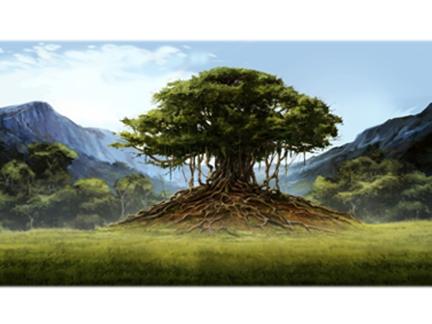Paysage baobab
