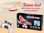 jeux concours bionic bird