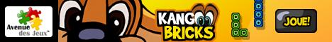 Jeu Kangoo Bricks