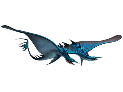 Le Seashocker Les Dragons Images Dragons 2 Cin 233 Zoom