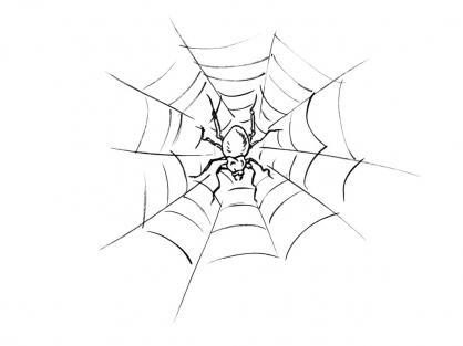 Coloriage araign e 12 coloriage araign es coloriage animaux - Araignee dessin ...