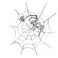 Coloriage Araignée 2