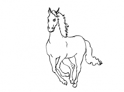 Coloriage Cheval 10