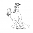 Coloriage Cheval 11