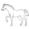 Coloriage Cheval 13