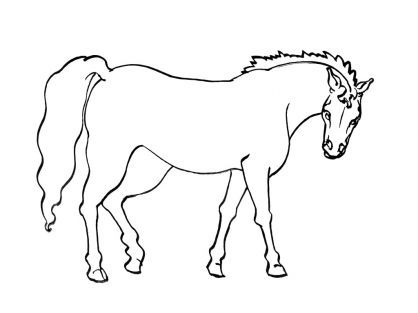 Coloriage Cheval 14