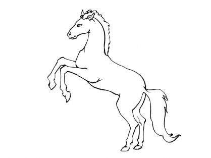 Coloriage Cheval 15