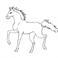 Coloriage Cheval 2