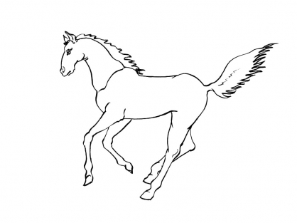 Coloriage Cheval 3