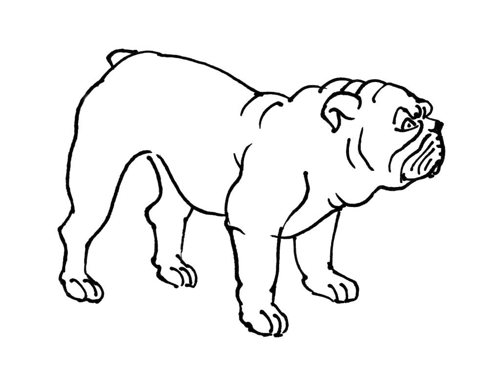 Coloriage chien 2 coloriage chiens coloriage animaux - Coloriage de chien ...