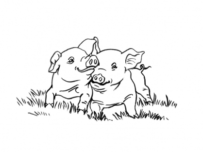 Coloriage Cochon 11