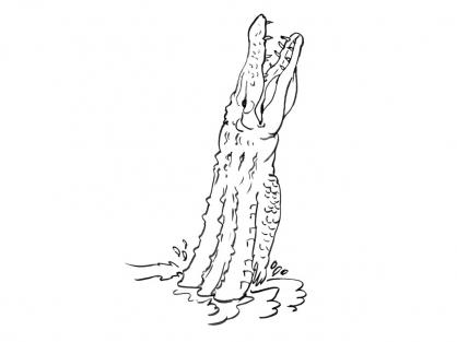 Coloriage Crocodile 15