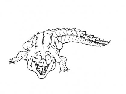 Coloriage Crocodile 8