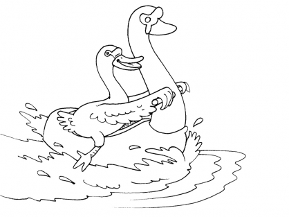 Coloriage cygne 27 coloriage cygnes coloriage animaux - Coloriage cygne ...