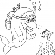Coloriage Dauphin 30