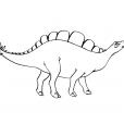 Coloriage Dinosaure : Stégosaures tête en l'air