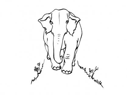Coloriage Eléphant 12