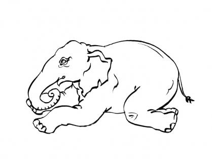 Coloriage Eléphant 13