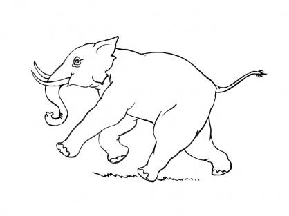 Coloriage Eléphant 15