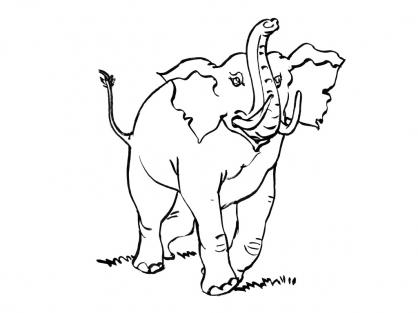 Coloriage Eléphant 2