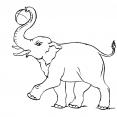 Coloriage Eléphant 3