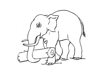 Coloriage Eléphant 4