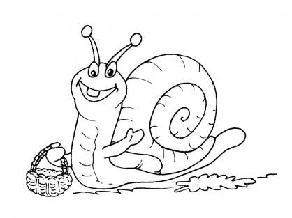 Coloriage Escargot 17