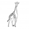 Coloriage Girafe 1