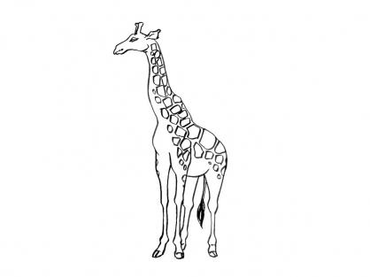 Coloriage Girafe 12