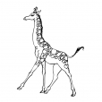 Coloriage Girafe 2
