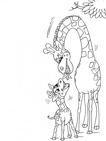 Coloriage Girafe 21
