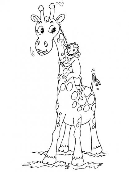 Coloriage girafe 29 coloriage girafes coloriage animaux - Girafe a imprimer ...