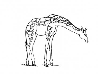 Coloriage Girafe 3