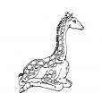 Coloriage Girafe 7