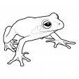 Coloriage Grenouille 1