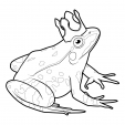 Coloriage Grenouille 10