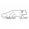 Coloriage Grenouille 14