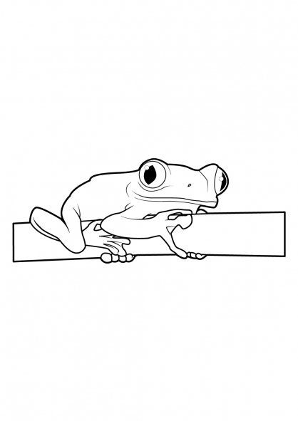 Coloriage Grenouille 15