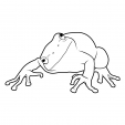 Coloriage Grenouille 3