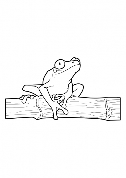 Coloriage Grenouille 5