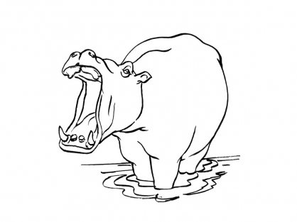 Coloriage hippopotame 13 coloriage hippopotames - Coloriage hippopotame ...