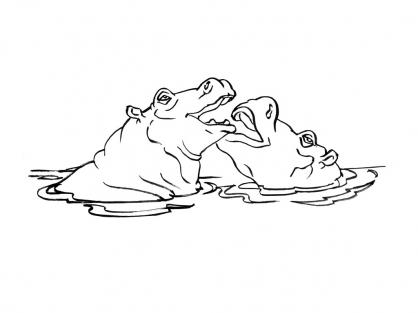 Coloriage Hippopotame 7