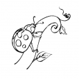 Coloriage Insecte 7
