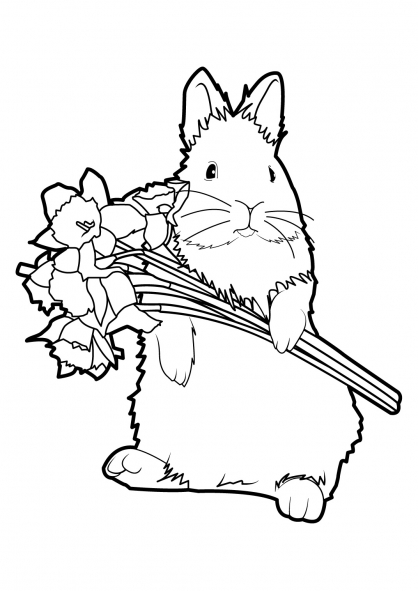 Coloriage Lapin 1