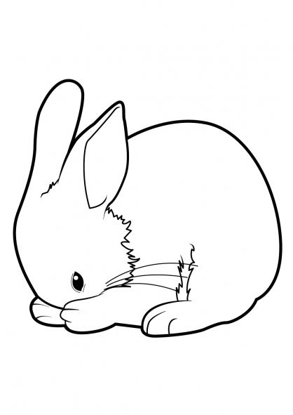 Coloriage Lapin 11