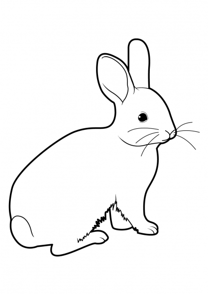 Coloriage lapin 15 coloriage lapins coloriage animaux - Coloriages lapins ...